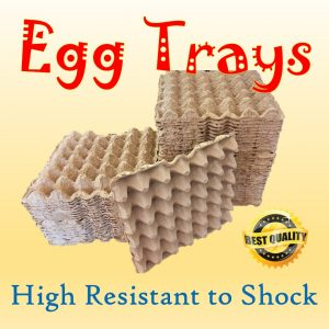Egg Trays with high resistance to shock