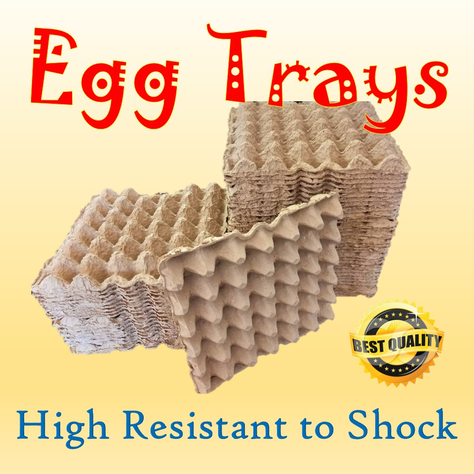 We supply the most environment friendly Pulp Paper Egg Tray made from the recycles paper. Our egg trays offer better results in packaging with low costing and safe and secure packaging to your eggs.