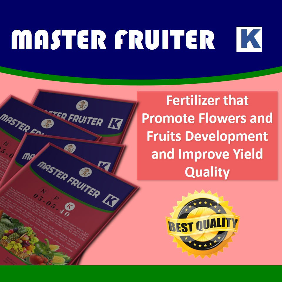 Master Fruiter (N:P:K 10:10:40): Fertilizer that Promote Flowers and Fruits Development and Improve its Quality