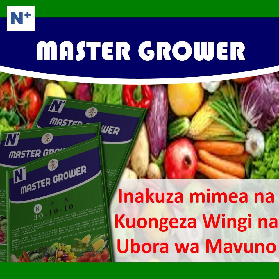 Master Grower ni mbolea (booster/busta) yenye potassium, phosphorus na kiwango kikubwa cha Nitrogeni katika uwiano wa N:P:K 30:10:10.